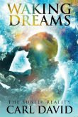 Waking Dreams: The Subtle Reality