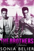 Taken By The Brothers: Gemini (Alpha Outlaws Book 1)